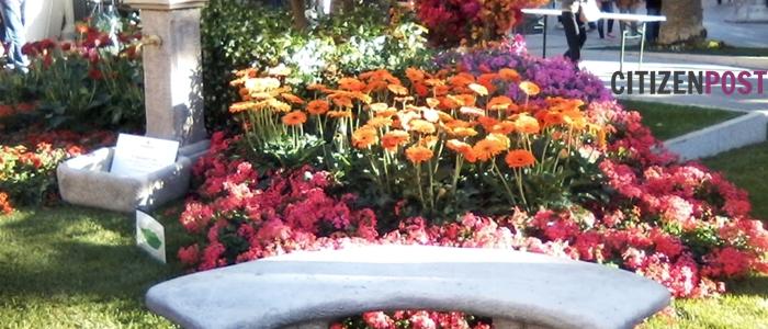 centro in fiore