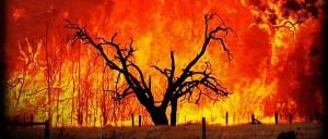 Incendi in Sardegna, Laconi il paese più colpito