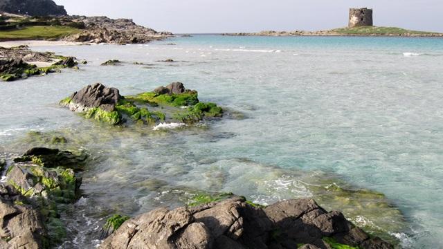 Chi sono e cosa fanno i travel blogger?