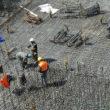 Info utili sul condono edilizio